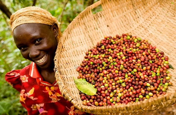 Fair Trade Coffee ~ What is fairtrade and why it should matter to you