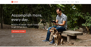 Todoist Reviews: Overview, Pricing and Features