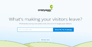 Crazy Egg Reviews: Overview, Pricing and Features