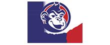 Logo of ChannelApe