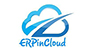 ERPinCloud reviews