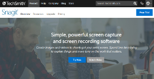 Snagit Reviews: Overview, Pricing and Features