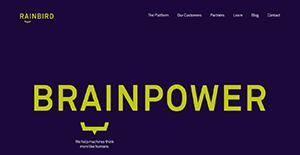 Logo of Rainbird