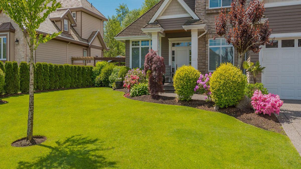 10 Best Free Landscape Design Software - Financesonline.com