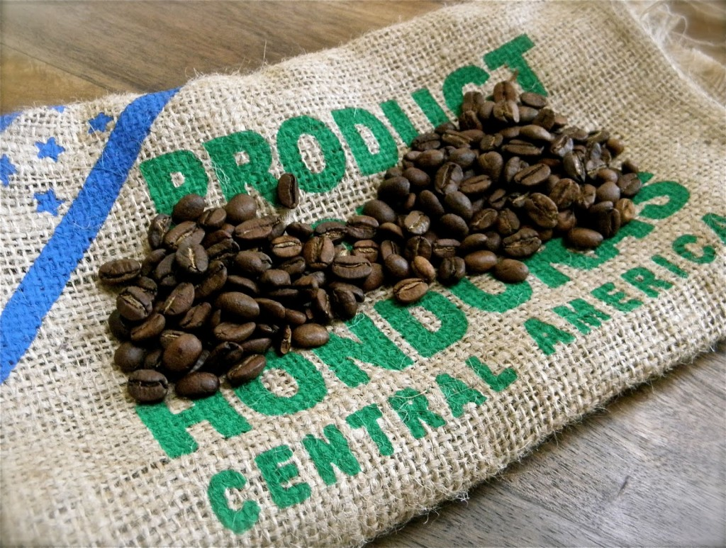 Top 10 most expensive coffee in the world luwak coffee is not the no